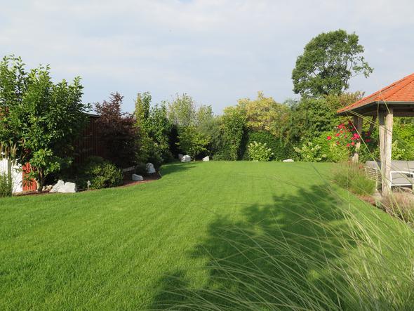 Geschnittener Rasen